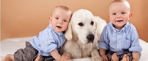 Haustiere stärken Immunabwehr bei Kindern